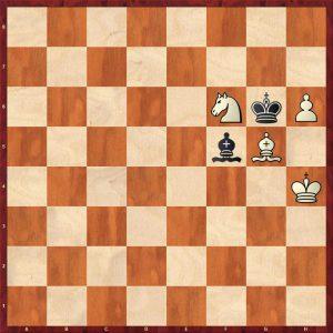 Ivanchuk-Shirov Bazna 2009 Move 84