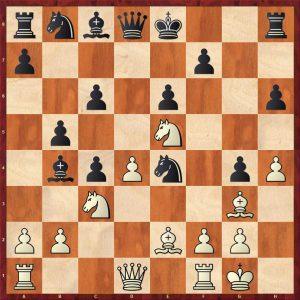 Sokolov-Novikov Variation 1 Move 12