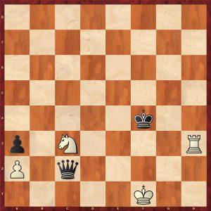 Brameyer - Pitzl Dresden 2010 Move 52 Black to play