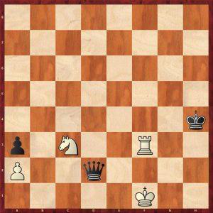Brameyer - Pitzl Dresden 2010 Move 55 Black to play