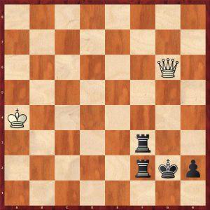 Tiviakov - Van der Wiel Leiden 2011 Move 116 Black to move